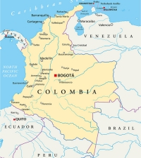 COLOMBIA: Assassination crisis continues to undermine peace agreement